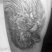 קעקוע קאבר של אריה