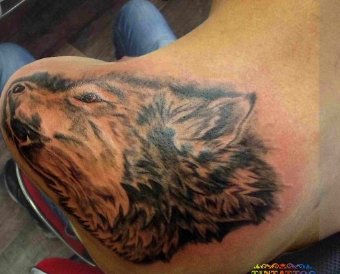 קעקוע של ראש של זאב על השכם