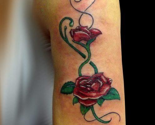 קעקוע של שני ורדים על הכתף כמעט עד המרפק