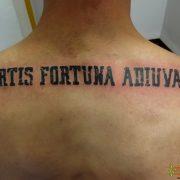 קעקוע Fortis fortuna adiuvat