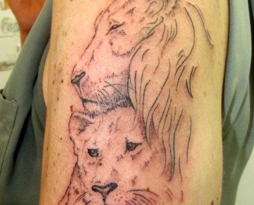 קעקוע אריה ולביאה