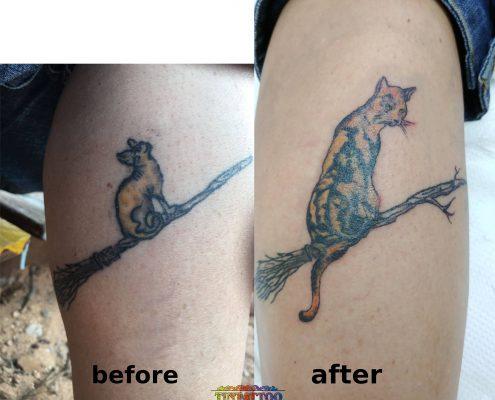 קעקוע קאבר חתול לא מוצלח במיוחד