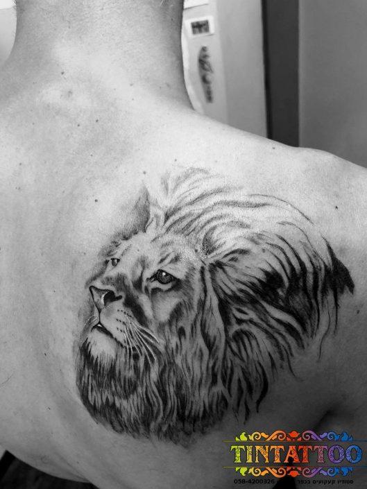 קעקוע ראש של אריה